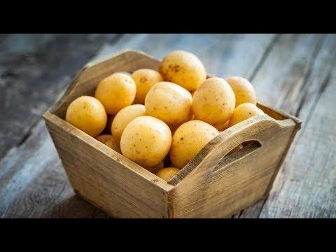 Бессовестно просто!!! 4 рецепта из обычной картошки, которые непременно удивят! ТОП 4 РЕЦЕПТА!!!