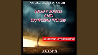 Heavy Rains and Howling Winds (Natural Sounds of Nature)