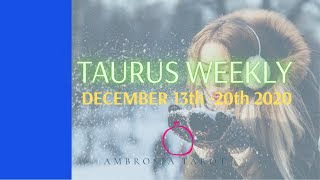 Taurus Weekly Love Check-in - Seize the day, working together & healing - December 13-20 2020