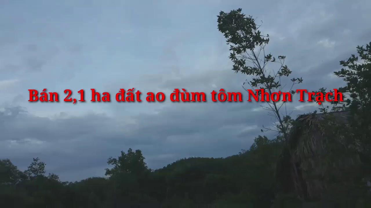 Bán đất Nhơn Trach Đồng Nai 2,1 ha giá 280 ngàn/m2,sổ đỏ riêng,dt 0976699775