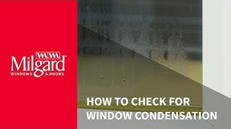 How to Check for Window Condensation