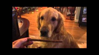Fifi & Fido Beefy Jerky Treats- All Healthy Pet Food Snacks For Training Supplies