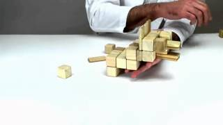 Kids Toys From Tegu - How To Build A Lion
