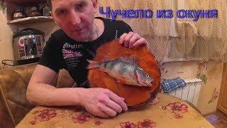 как сделать чучело из рыбы в домашних условиях