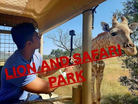 Lion and Safari Park South Africa |GoPro|