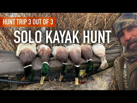 Solo Kayak Duck Hunt: The Ultimate One Man Limit?