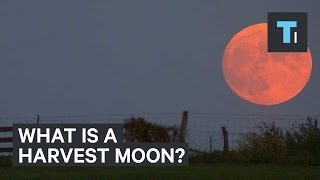 Here's what a harvest moon actually is