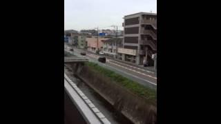 テスト川の動画
