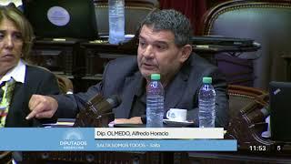 Diputado Olmedo Alfredo Horacio - Sesión 22-11-2017 - HO