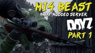 [1.0] DayZ Standalone - M14 Is A Beast - Day 1