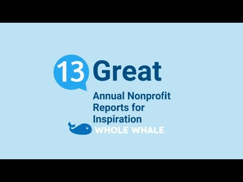 Nonprofit Annual Report Ideas & 13 Examples