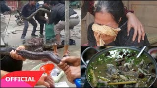 Đi rừng bắt được rắn lạ đem về nấu cháo ngồi ăn nhậu, sáng hôm sau cả làng...