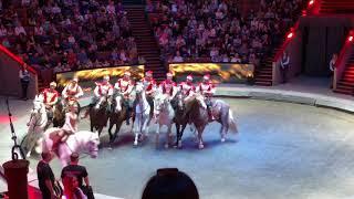 Цирк на Вернадского, 5% от шоу
