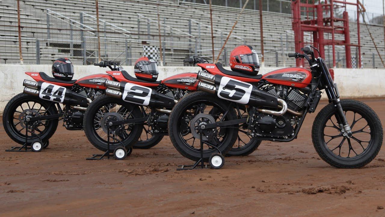 Harley Flat Track >> Daytona Tt Forever Flat Track Harley Davidson