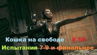 Прохождение Batman: Arkham Knight [Бэтмен: Рыцарь Аркхема] Кошка на свободе в HD # 19