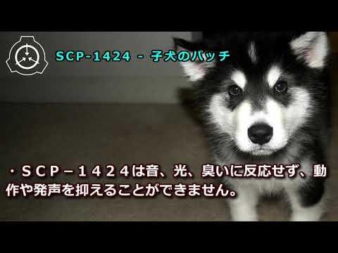 【怪異750】SCP-1424 - 子犬のパッチ