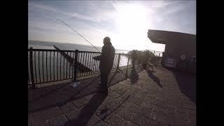 Borsele Maasvlakte Brouwersdam niet zoveel vis