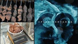 Ели мясо мужики - Среда обитания | Документальный фильм