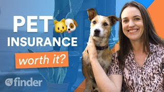 Is Pet Insurance worth it? | Everything you need to know