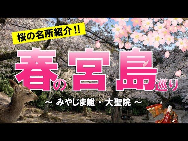 【動画公開】春だ!そうだ!宮島へ行こう♪