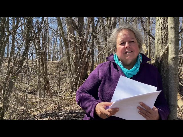 50 Years of Earth Day: Dr. Robin Kimmerer