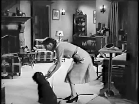 Devil's Cargo (1948) THE FALCON
