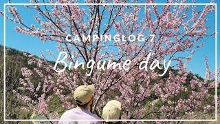 캠핑로그 7. 제천캠핑장/벚꽃캠핑/내셔널지오그래픽캐빈하…