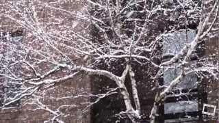 Tombe la neige - Падает снег - The snow falls
