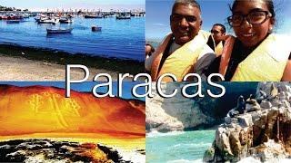 PARACAS │ ISLAS BALLESTAS