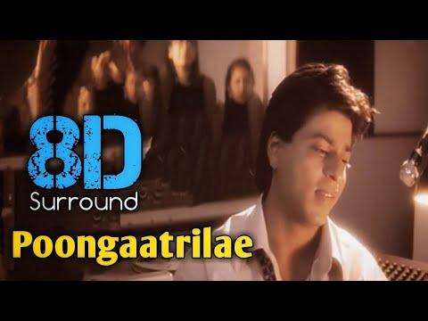Download Poongaatrilae 8D | Uyire | A.R. Rahman | Shahrukh Khan | Manisha Koirala | 8D BeatZ