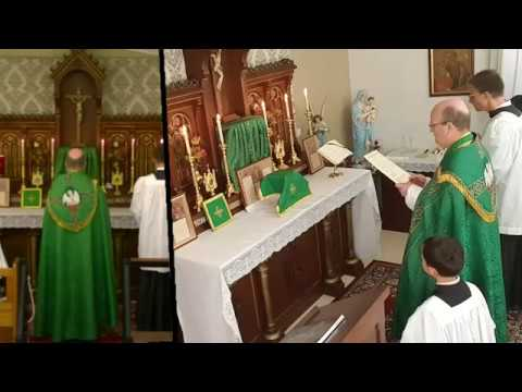 2019-08-04 8th Sunday After Pentecost - Traditional Catholic