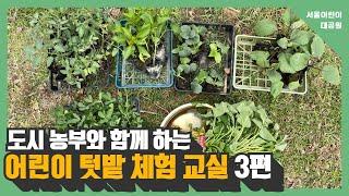 도시 농부와 함께 하는 어린이 텃밭 체험 교실 (3편)썸네일