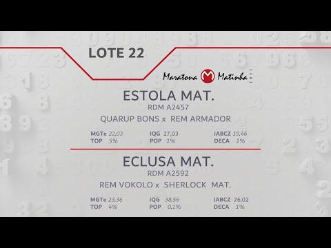LOTE 22  Maratona Matinha