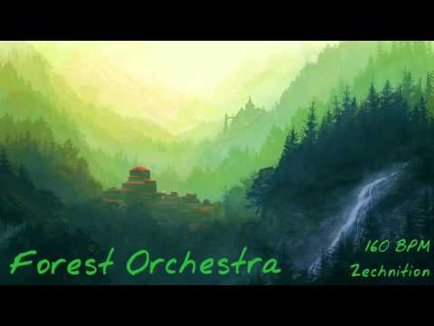Zechnition - Forest Orchestra