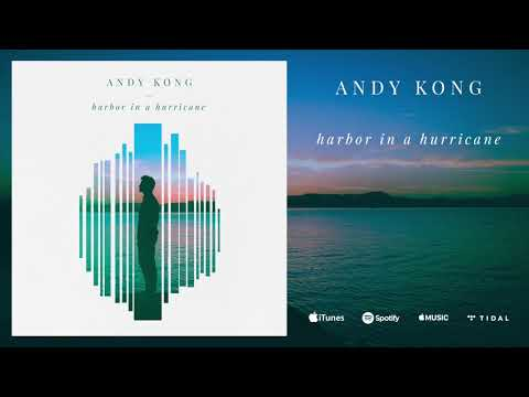 Andy Kong - Harbor in a Hurricane (Audio)