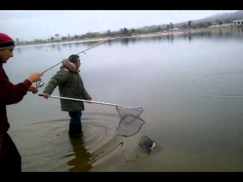 Santa Ana River Lake Fishing The Fighter Youtube