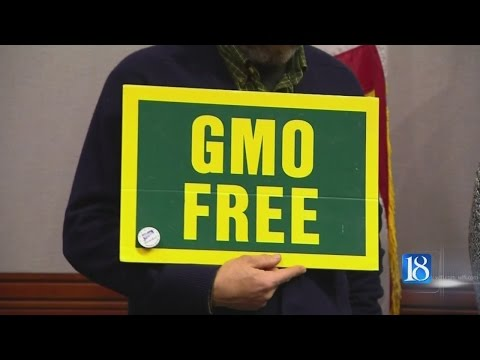 Purdue researchers warn of problems if GMO crops are banned