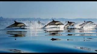 Indian Ocean - Kaun