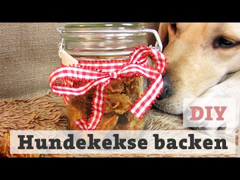hundekekse backen thunfisch leckerli f r hund katze selber backen diy youtube. Black Bedroom Furniture Sets. Home Design Ideas