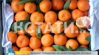 Смотреть видео Хороший поставщик овощей и фруктов в Нижнем Новгороде