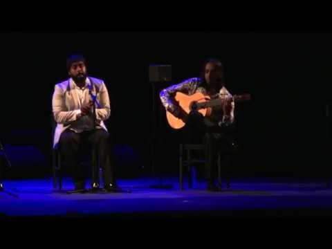 5e journée du festival Arte Flamenco : entre tradition et évolution