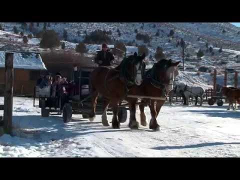 Wagon rides at Hardware Ranch