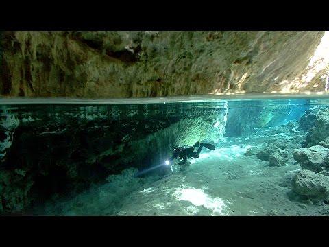 The Blind Cavefish   JONATHAN BIRD'S BLUE WORLD