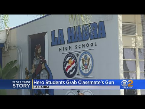 Freshman Tackled By Fellow Students After Producing Gun In La Habra High School