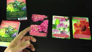 Flower Therapy Oracle Card Reading 15th - 21st July 2013