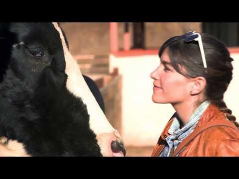 Vivianne Visits a Farm Sanctuary | The Zoo