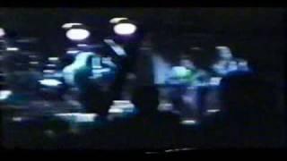 RHCP - One Big Mob Live