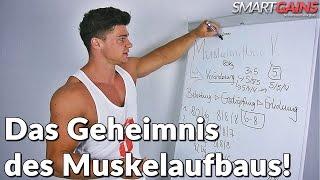Das Geheimnis des Muskelaufbaus - Magisches Training? Worauf kommt es an?