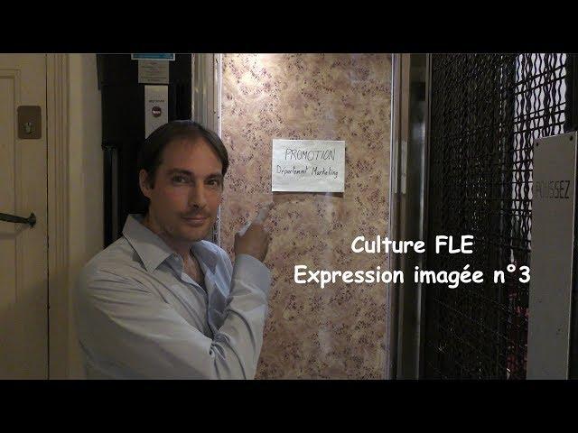 【Culture FLE】Expression imagée n°3