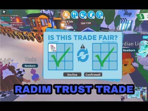RADIM TRUST TRADE